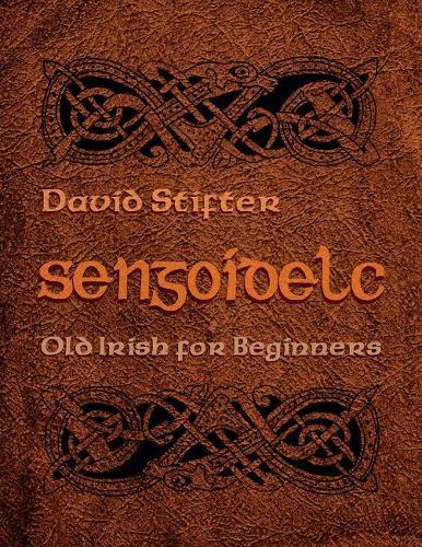Sengoidelc: Old Irish For Beginners - Irish Studies (Paperback)