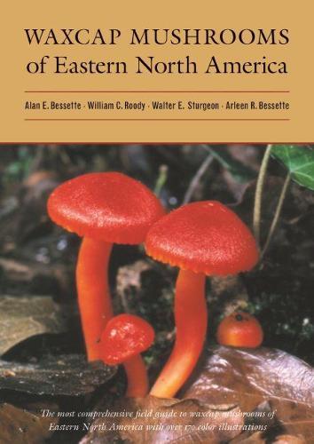 Waxcap Mushrooms of Eastern North America (Hardback)