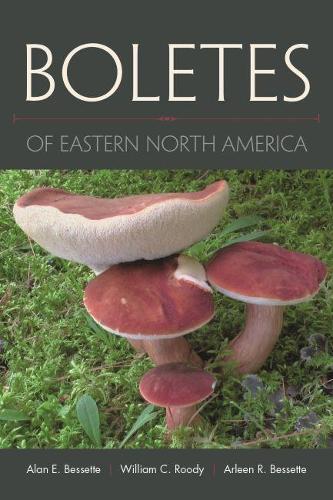 Boletes of Eastern North America: ` (Hardback)