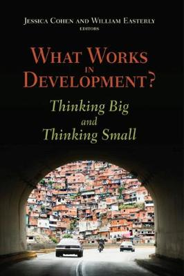 What Works in Development? Thinking Big and Thinking Small (Paperback)