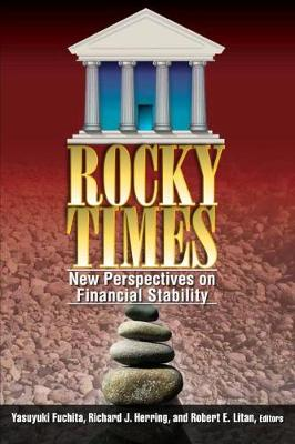 Rocky Times: New Perspectives on Financial Stability (Paperback)