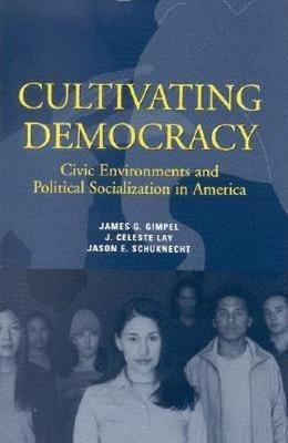 Cultivating Democracy: Civic Environments and Political Socialization in America (Paperback)