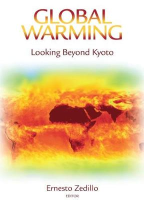 Global Warming: Looking Beyond Kyoto (Hardback)