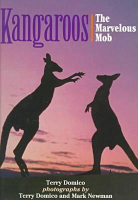 Kangaroos (Hardback)