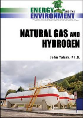 Natural Gas and Hydrogen (Hardback)