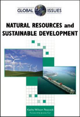 Natural Resources and Sustainable Development - Global Issues (Hardback)