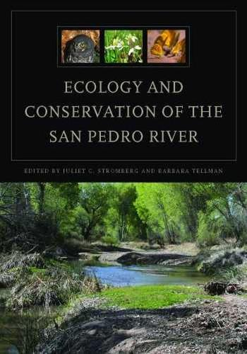 Ecology and Conservation of the San Pedro River (Hardback)
