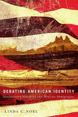 Debating American Identity: Southwestern Statehood and Mexican Immigration (Hardback)