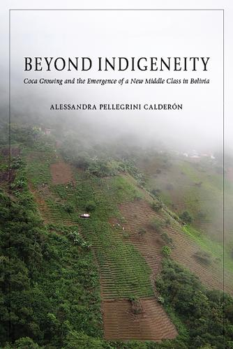 Beyond Indigeneity: Growing and the Emergence of a New Middle Class in Bolivia (Hardback)