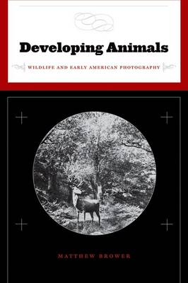 Developing Animals: Wildlife and Early American Photography (Hardback)