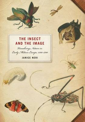The Insect and the Image: Visualizing Nature in Early Modern Europe, 1500-1700 (Hardback)