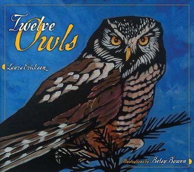 Twelve Owls (Hardback)