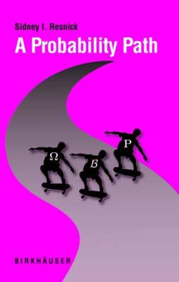 A Probability Path (Hardback)