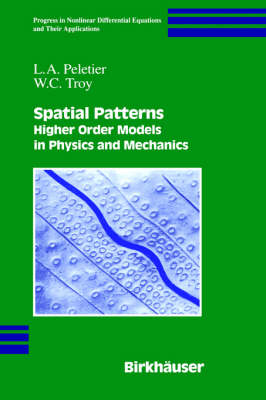 Spatial Patterns: Higher Order Models in Physics and Mechanics - Progress in Nonlinear Differential Equations and Their Applications 45 (Hardback)