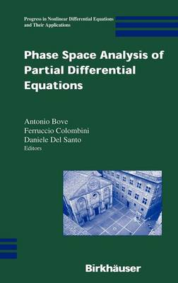Phase Space Analysis of Partial Differential Equations - Progress in Nonlinear Differential Equations and Their Applications 69 (Hardback)