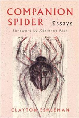 Companion Spider (Paperback)