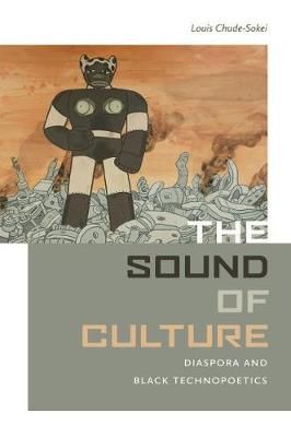 The Sound of Culture (Paperback)