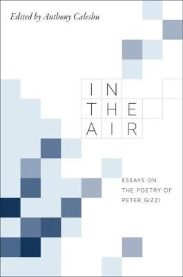 In the Air: Essays on the Poetry of Peter Gizzi (Hardback)