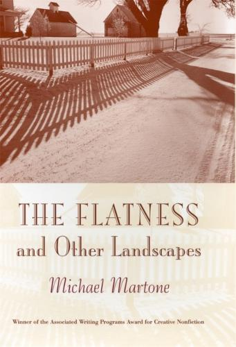 The Flatness and Other Landscape (Paperback)