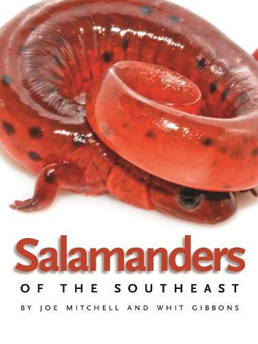 Salamanders of the Southeast (Paperback)