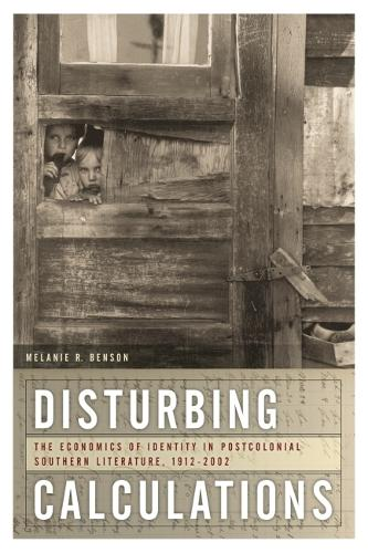 Disturbing Calculations: The Economics of Identity in Postcolonial Southern Literature, 1912-2002 - New Southern Studies (Paperback)
