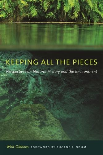 Keeping All the Pieces (Paperback)