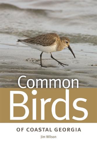 Common Birds of Coastal Georgia (Paperback)