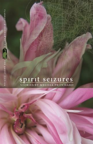 Spirit Seizures (Paperback)