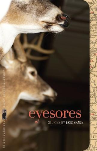 Eyesores - Flannery O'Connor Award for Short Fiction (Paperback)