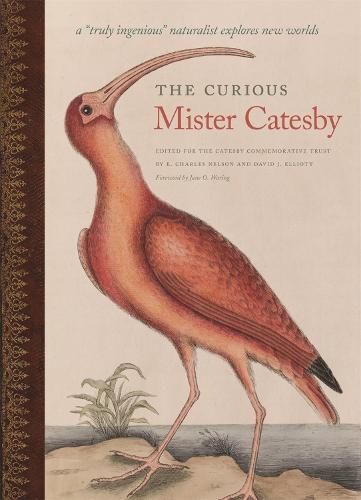 "The Curious Mister Catesby: A """"Truly Ingenious"""" Naturalist Explores New Worlds - A Wormsloe Foundation Nature Book (Hardback)"