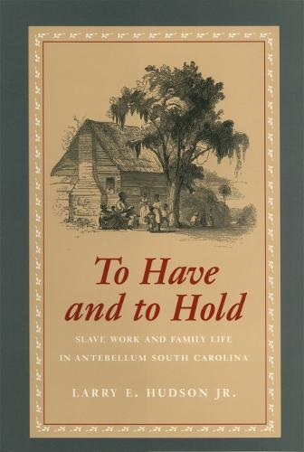 To Have and to Hold: Slave Work and Family Life in Antebellum South Carolina (Paperback)