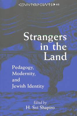 Strangers in the Land: Pedagogy,Modernity,and Jewish Identity - Counterpoints Studies in the Postmodern Theory of Education 46 (Paperback)
