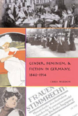 Gender, Feminism, and Fiction in Germany, 1840-1914 - Gender, Sexuality, and Culture 5 (Hardback)