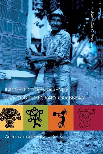 Indigenous Resurgence in the Contemporary Caribbean: Amerindian Survival and Revival (Paperback)