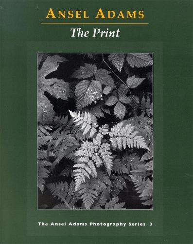 New Photo Series 3: Print - New Photo (Paperback)