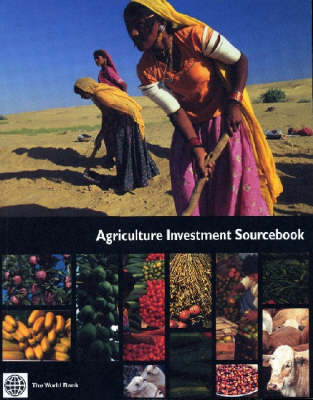 Afghanistan: State Building, Sustaining Growth, and Reducing Poverty (Paperback)
