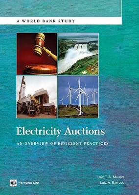 Electricity Auctions: An Overview of Efficient Practices (Paperback)