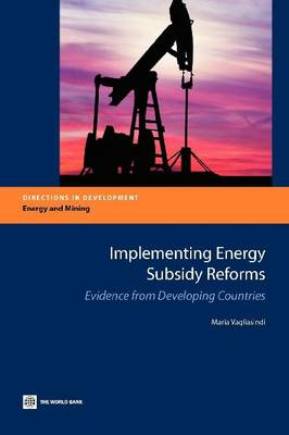 Implementing Energy Subsidy Reforms: Evidence from Developing Countries (Paperback)