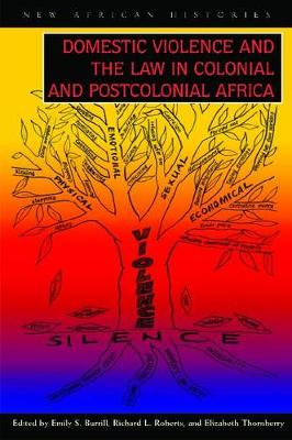 Domestic Violence and the Law in Colonial and Postcolonial (Hardback)