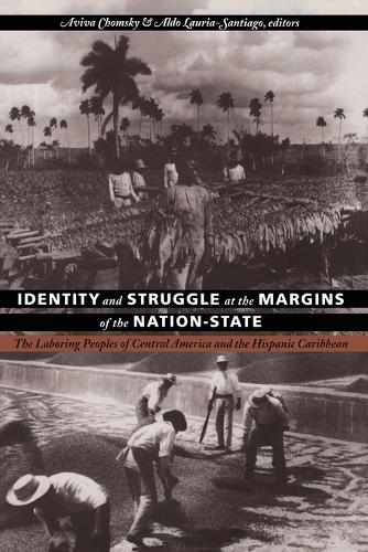 Identity and Struggle at the Margins of the Nation-State: The Laboring Peoples of Central America and the Hispanic Caribbean - Comparative and International Working-Class History (Paperback)