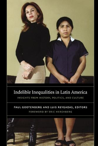 Indelible Inequalities in Latin America: Insights from History, Politics, and Culture (Paperback)