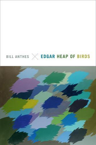 Edgar Heap of Birds (Paperback)