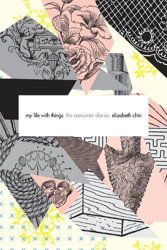 My Life with Things: The Consumer Diaries (Paperback)