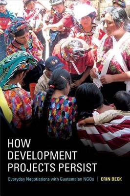 How Development Projects Persist: Everyday Negotiations with Guatemalan NGOs (Paperback)