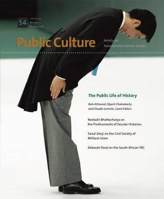 The Public Life of History (Paperback)