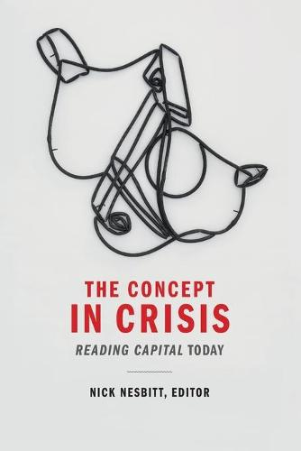 The Concept in Crisis: Reading Capital Today (Paperback)