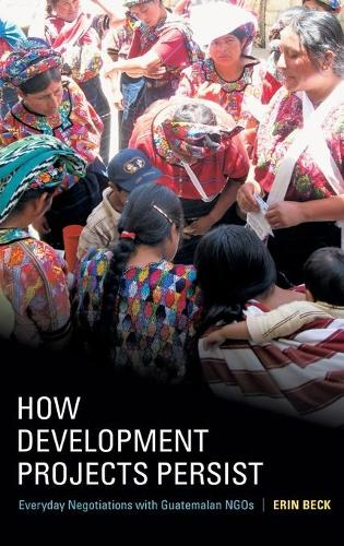 How Development Projects Persist: Everyday Negotiations with Guatemalan NGOs (Hardback)