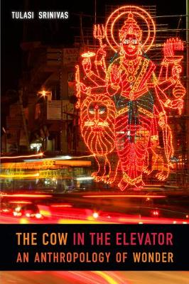 The Cow in the Elevator: An Anthropology of Wonder (Paperback)