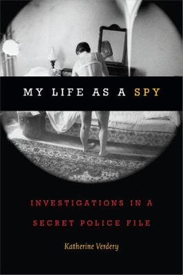 My Life as a Spy: Investigations in a Secret Police File (Paperback)