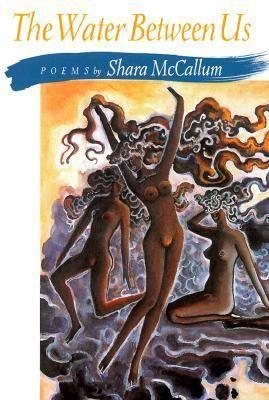 The Water Between Us - Pitt Poetry Series (Paperback)